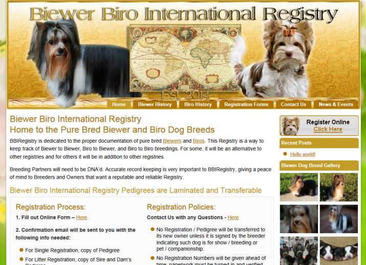 BBI Registry