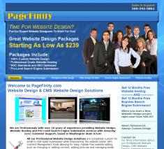 PageFinity 2011